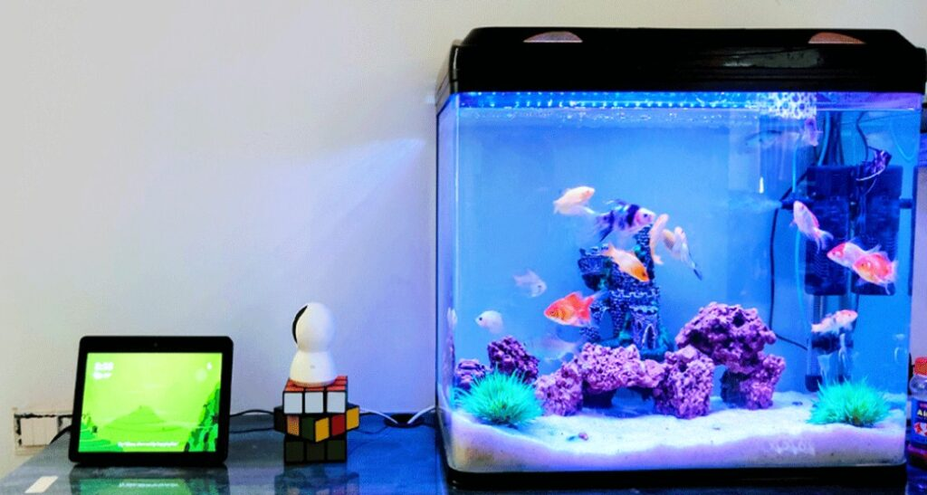 What sealant is safe for aquariums