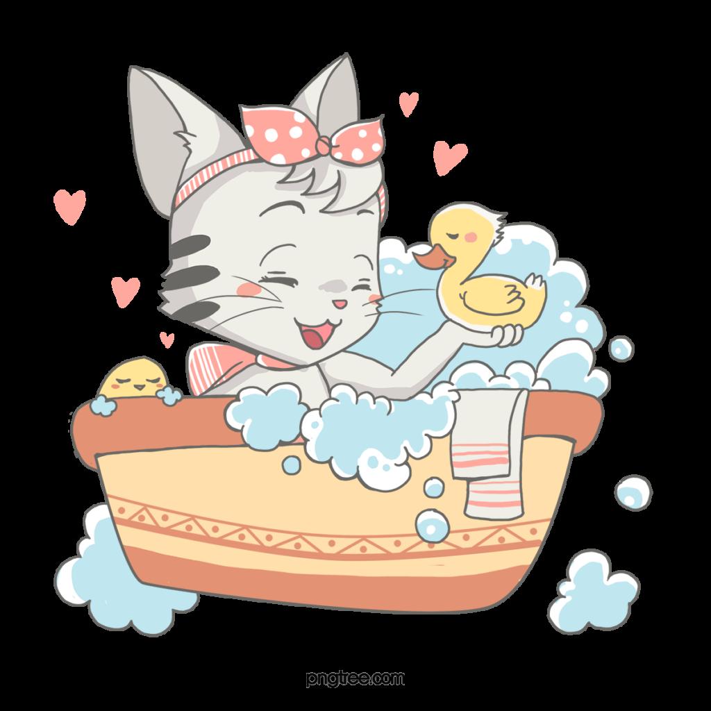 how to bathe a cat